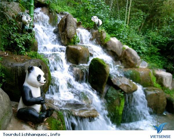 Du lịch Hàn Quốc - Chìm mình trong rừng truc xanh biếc ở xứ kim chi - Ảnh 6