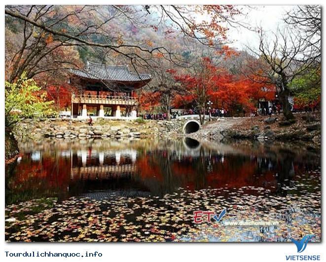 Du lịch thông minh Hàn Quốc với các ứng dụng di động VisitKorea! - Ảnh 3