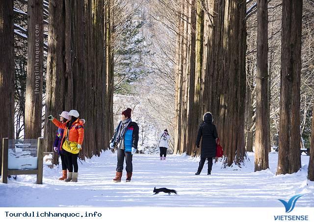 Du lịch vào mùa đông trên đất nước Hàn Quốc - Ảnh 2