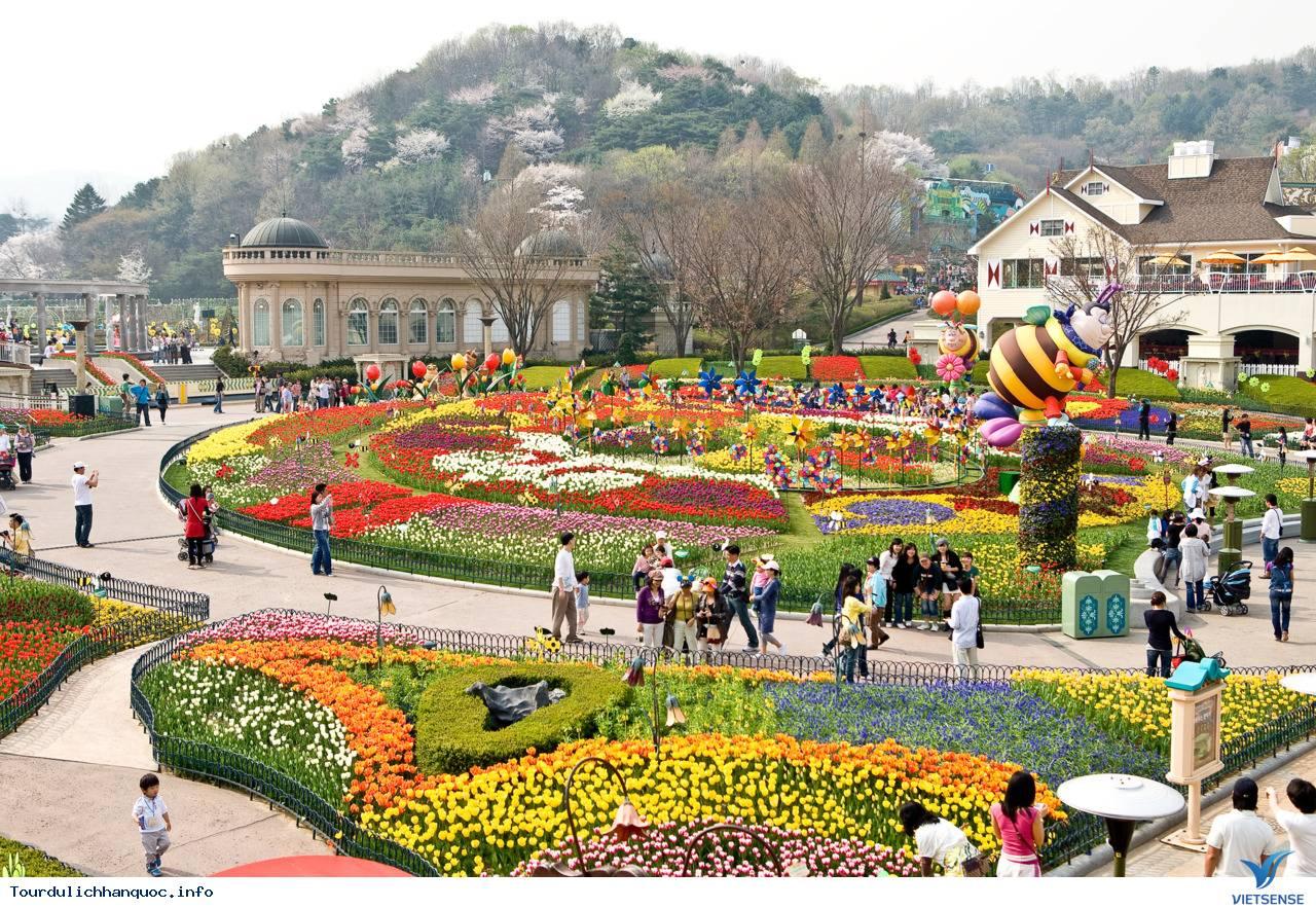 Everland - Công viên giải trí lớn nhất Hàn Quốc - Ảnh 2