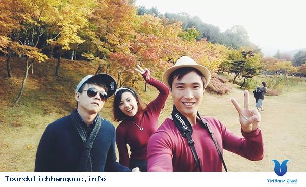 Giới trẻ Việt Nam kéo nhau sang Hàn Quốc ngắm mùa lá đỏ