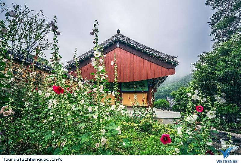 Haedong Yonggungsa- Ngôi Chùa Cổ Nhất Hàn Quốc - Ảnh 4