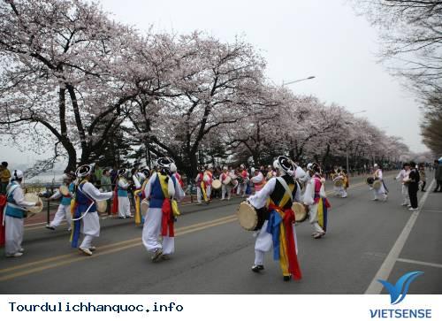 Hai Điểm Ngắm Hoa Anh Đào Tuyệt Đẹp Ở Hàn Quốc - Ảnh 3
