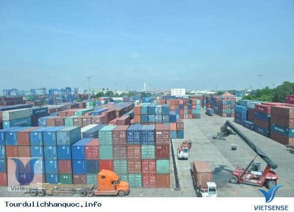 Mở cửa thị trường tại Việt Nam với nhiều sản phẩm