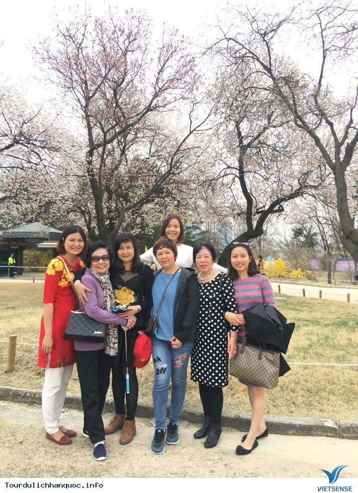 Hình ảnh đoàn Hàn Quốc 30/3-04/04/2018 khởi hành đồng hành cùng Vietsense Travel - Ảnh 5