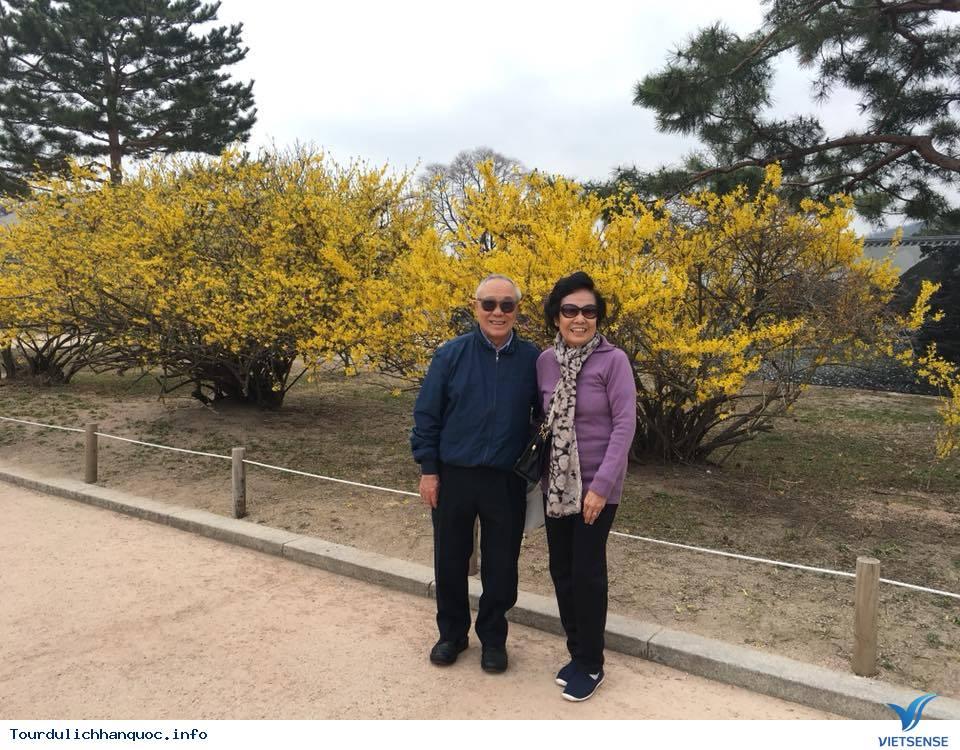 Hình ảnh đoàn Hàn Quốc 30/3-04/04/2018 khởi hành đồng hành cùng Vietsense Travel - Ảnh 7