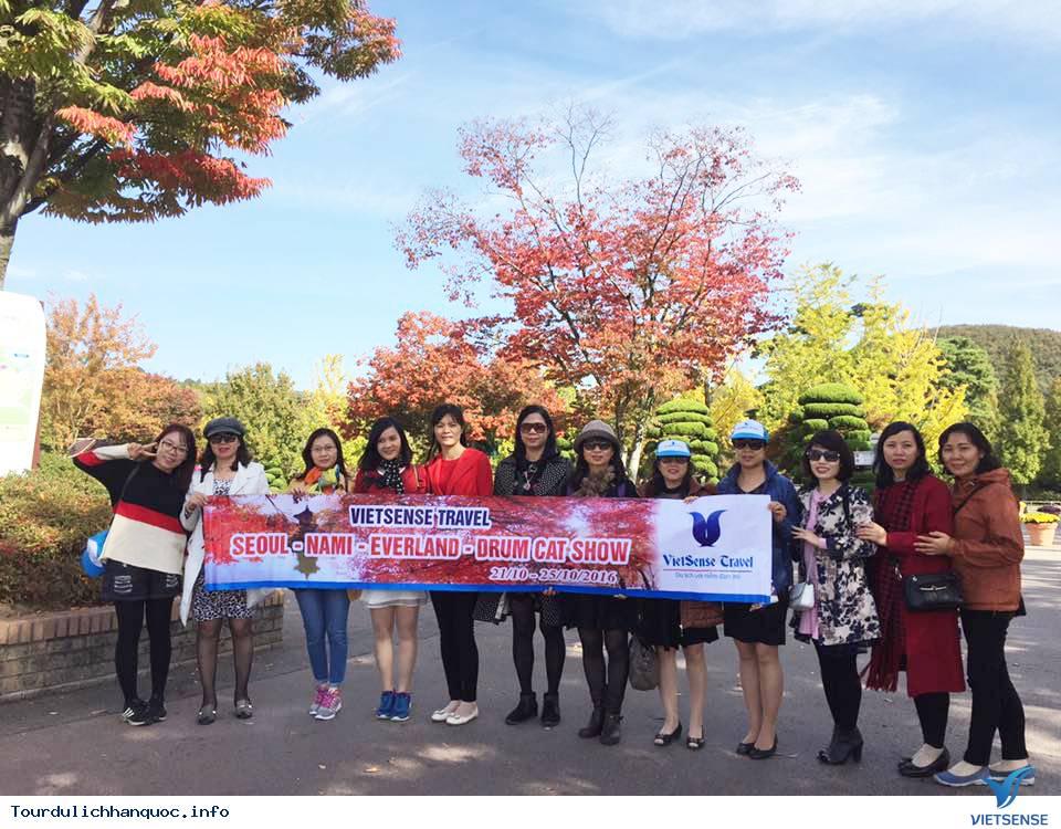Hình ảnh đoàn khách tham quan Hàn Quốc mùa lá đỏ từ ngày 20/10-24/10/2017 - Ảnh 6