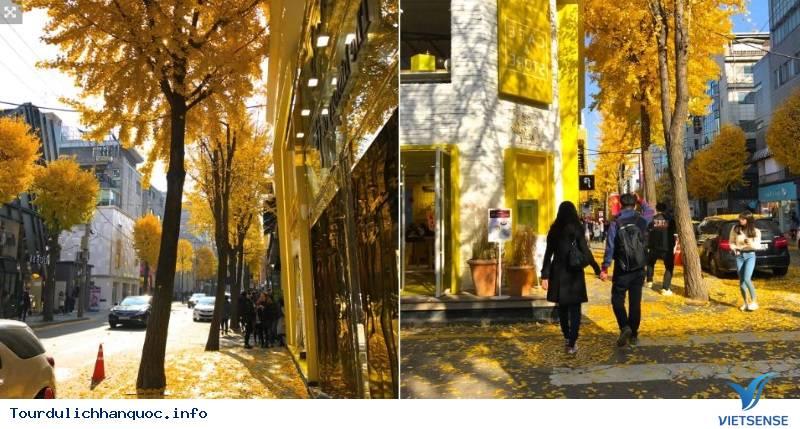 Hòa Mình Vào Những Trải Nghiệm Tuyệt Vời Với Mùa Thu Hàn Quốc - Ảnh 4