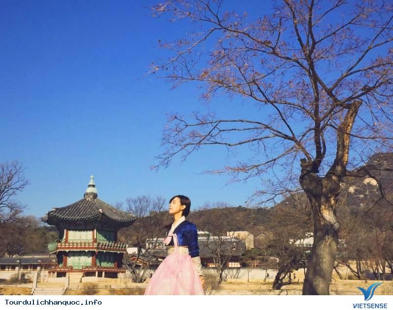 Hòa Mình Vào Những Trải Nghiệm Tuyệt Vời Với Mùa Thu Hàn Quốc - Ảnh 1