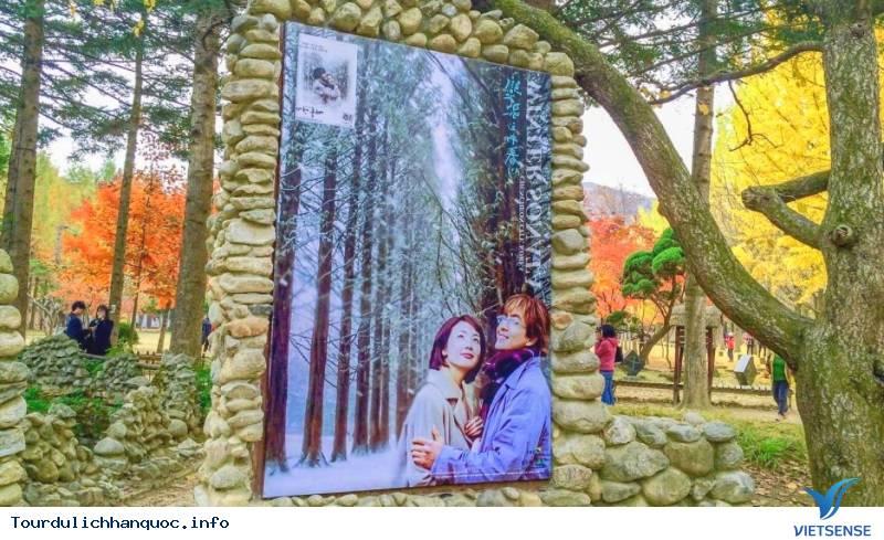 Hòa Mình Vào Những Trải Nghiệm Tuyệt Vời Với Mùa Thu Hàn Quốc - Ảnh 3