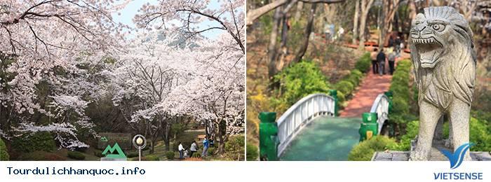 Lãng mạn trong Lễ hội Gunhangje Jinhae ở xứ sở Hàn Quốc - Ảnh 2