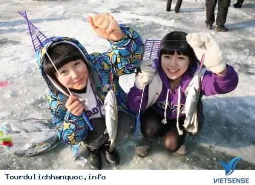 Du lịch Hàn Quốc - Lễ hội câu cá hồi trên băng