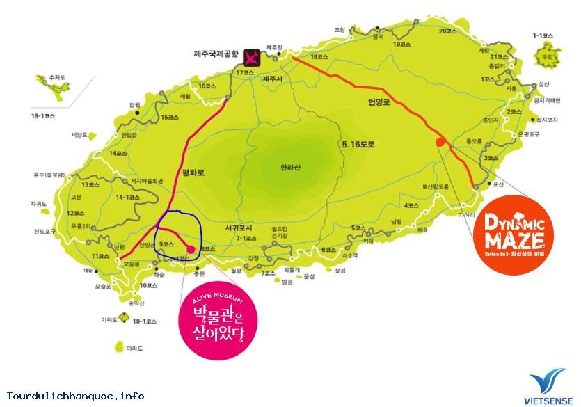Mắc cạn trong bảo tàng nghệ thuật Alive tại đảo Jeju - Ảnh 1