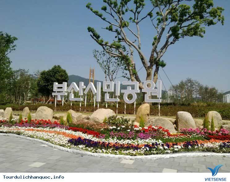 Một Vòng Busan - Ảnh 1