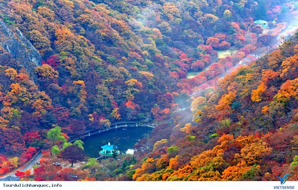 Ngắm Mùa Thu Hàn Quốc Ở Năm Ngọn Núi Đẹp Mê Hồn - Ảnh 4