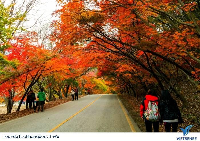Ngắm Mùa Thu Hàn Quốc Ở Năm Ngọn Núi Đẹp Mê Hồn - Ảnh 2