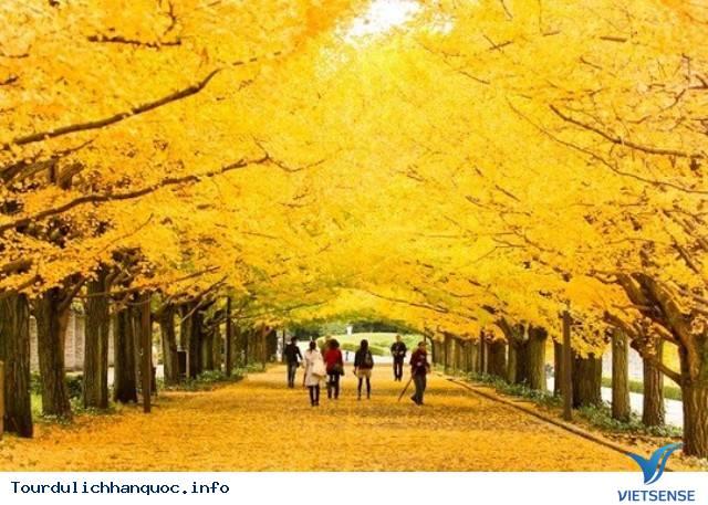 Những địa điểm không thể không đến khi bạn ghé thăm đất nước Hàn Quốc - Ảnh 2