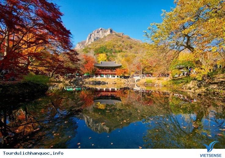 Những ngọn núi nổi tiếng ngắm lá đỏ mùa thu của Hàn Quốc - Ảnh 5