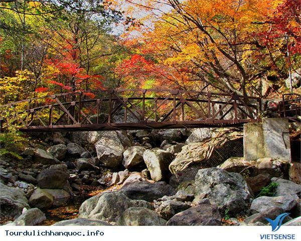 Những ngọn núi nổi tiếng ngắm lá đỏ mùa thu của Hàn Quốc - Ảnh 4