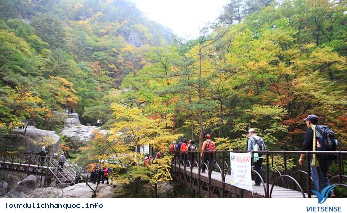 Những ngọn núi nổi tiếng ngắm lá đỏ mùa thu của Hàn Quốc - Ảnh 3