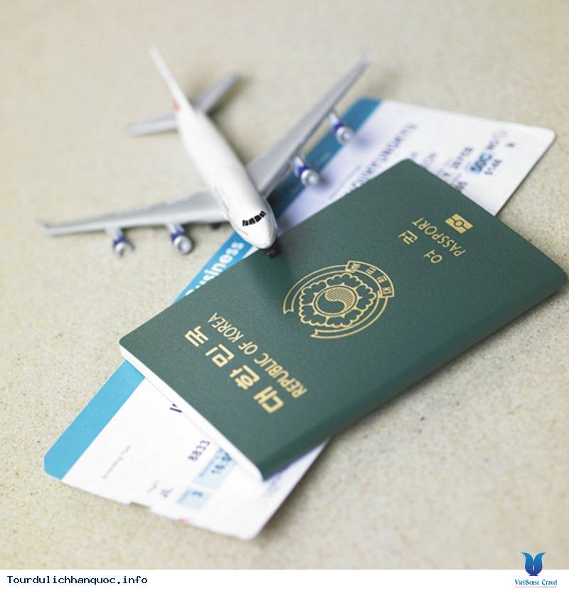 Tất Tần Tật Về Phân Loại Visa Hàn Quốc - Ảnh 3