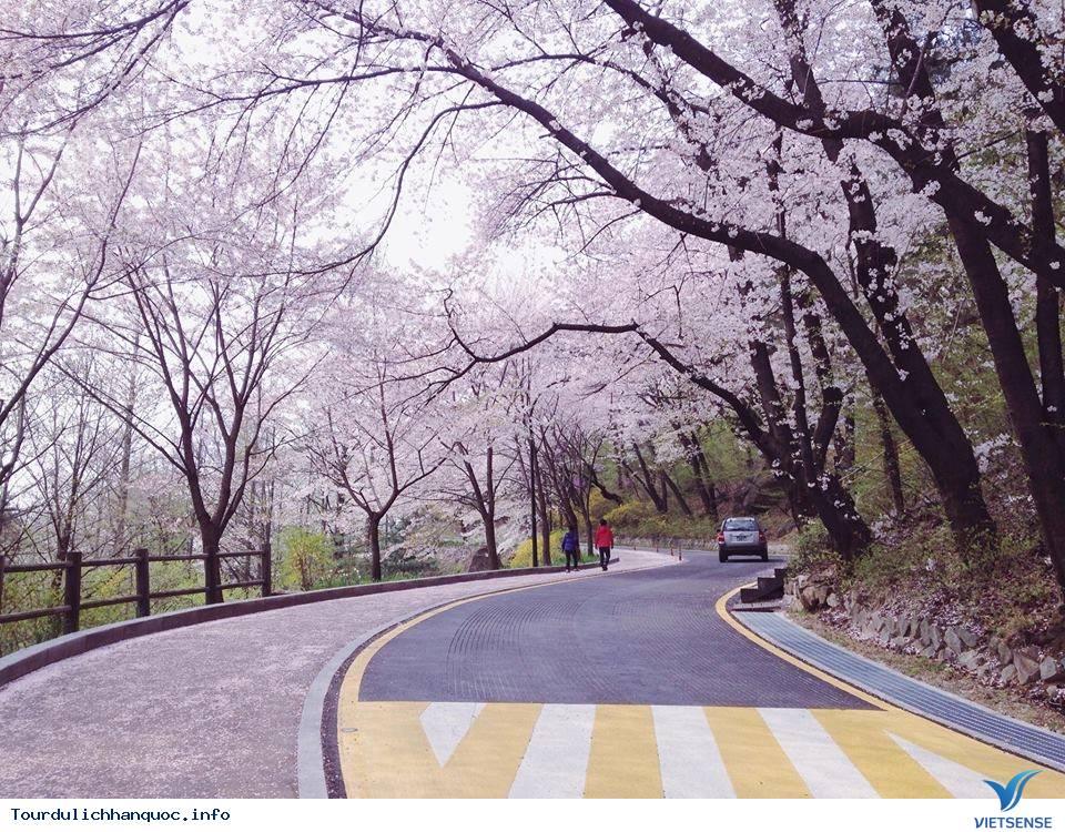 Tham gia sự kiện ngày quốc khánh ở Hàn Quốc và tìm hiểu về một nữ nhân vật lịch sử - Ảnh 1