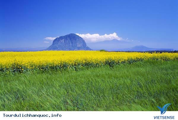 Tổng quan về đảo Jeju, Đảo tình yêu Hàn Quốc - Ảnh 1