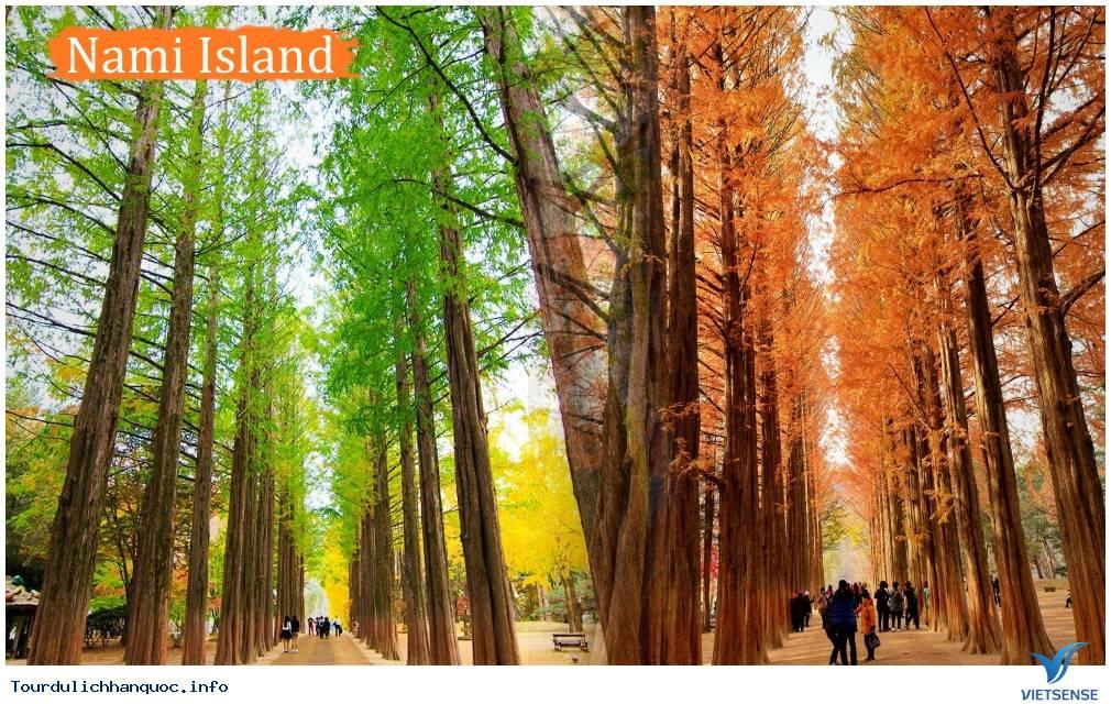 Tour du lịch Hà Nội Hàn Quốc 5 Ngày,tour du lich ha noi han quoc 5 ngay
