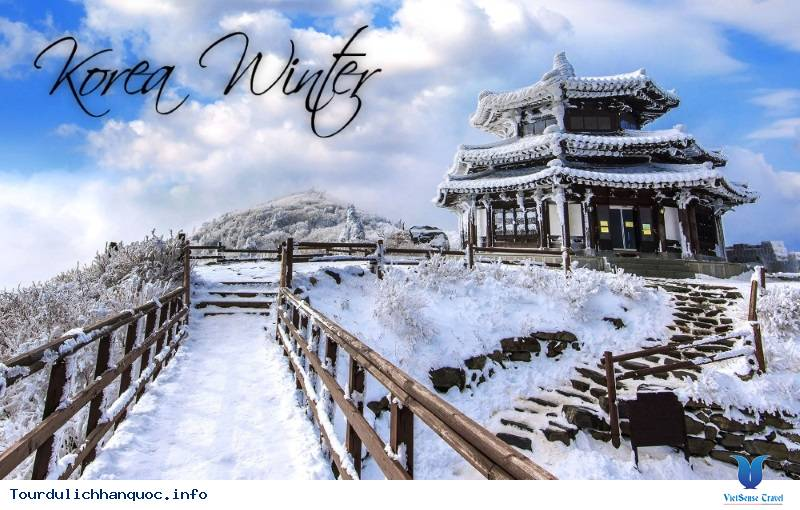 Tour Du Lịch Hàn Quốc Tết Dương Lịch 2019